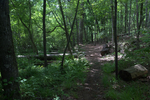 Walking trail.