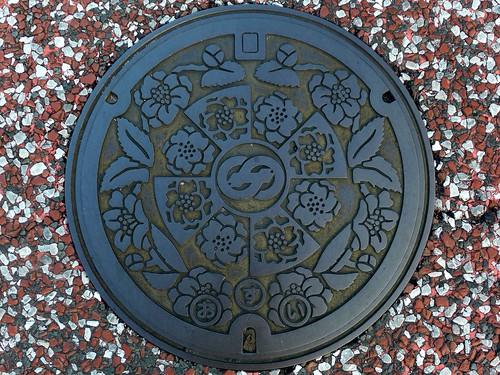 Saza Nagasaki, manhole cover 2 (長崎県佐々町のマンホール2)