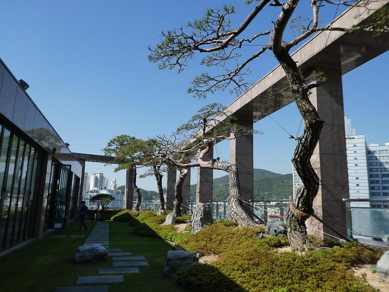 The rooftop garden at the Arban Hotel, Busan, South Korea