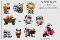 {YD} Cutie Bunnies