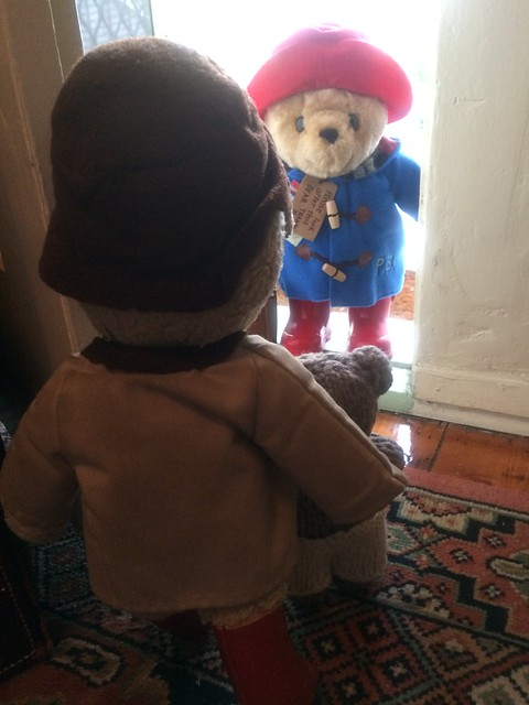 Paddington and Scout Receive a Visitor