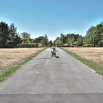 Path in Haslam Park Preston