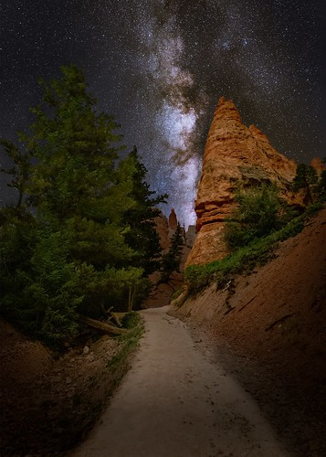 Along the Trail in Canyon Country | by Wayne Pinkston