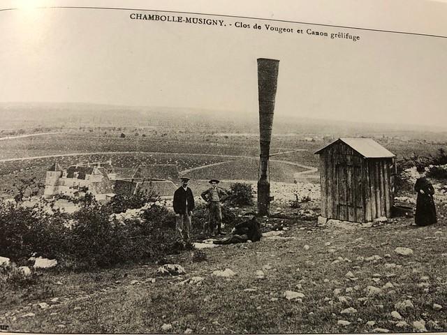 Blog Juancho Asenjo - El vino de Borgoña en el largo siglo XIX