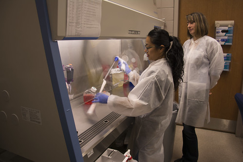 Joanna Sztuba-Solinska, assistant professor of biological sciences in Auburn University's College of Sciences and Mathematics, oversees lab work with a post-doc, Gabriela Chavez Calvillo.
