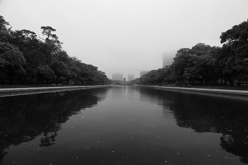 janbuchholtz houston texas hermannpark monochrome reflection pool park reflecting landscape lowkey fog dark