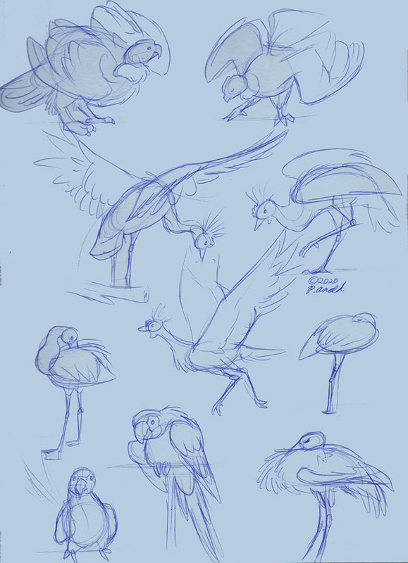 3.7.20 - Disney's Animal Kingdom Sketches