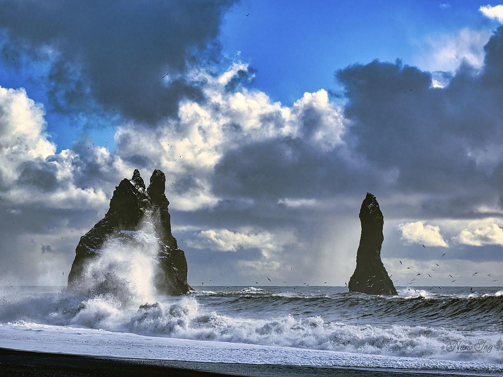 [03] Vik - Reynisfjara - Islande 49695760408_4e8ede8283_b