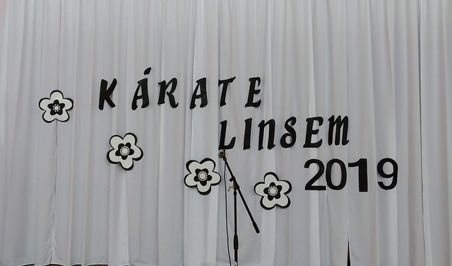 Linsem-Muestra de Kárate 2019