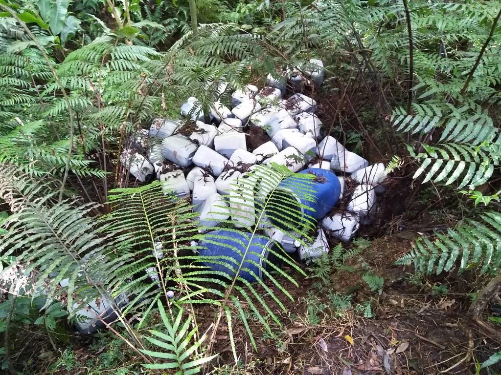 遭棄置翡翠水庫集水區廢液桶。圖片提供:環保署