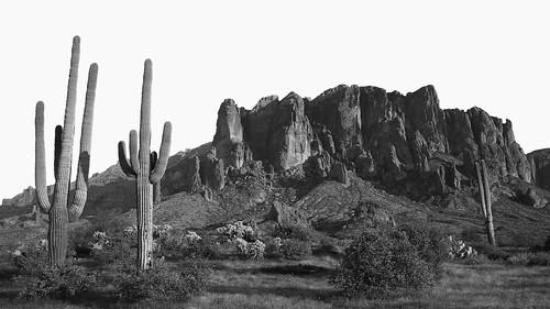 lostdutchmanstatepark arizona blackandwhite desert superstitionmountains saguarocactus hike sunset sundown