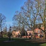 Morning Constitutional. The Village Green, Chorlton, Manchester