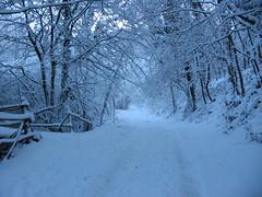 neve silenziosa
