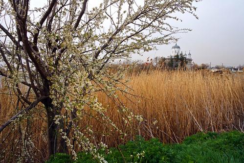 landscape călărași românia church outdoor colors nature samsungnxmini tree spring