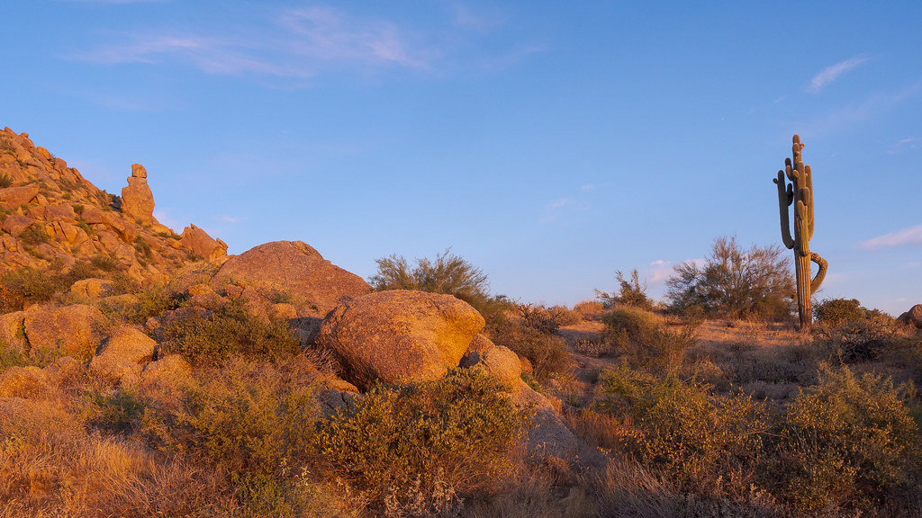 A rock formation I call the Guariand and an old saguaro stand above the Marcus Landslide Trail at sunrise in McDowell Sonoran Preserve in Scottsdale, Arizona in November 2019