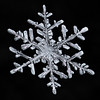 Snowflake 885