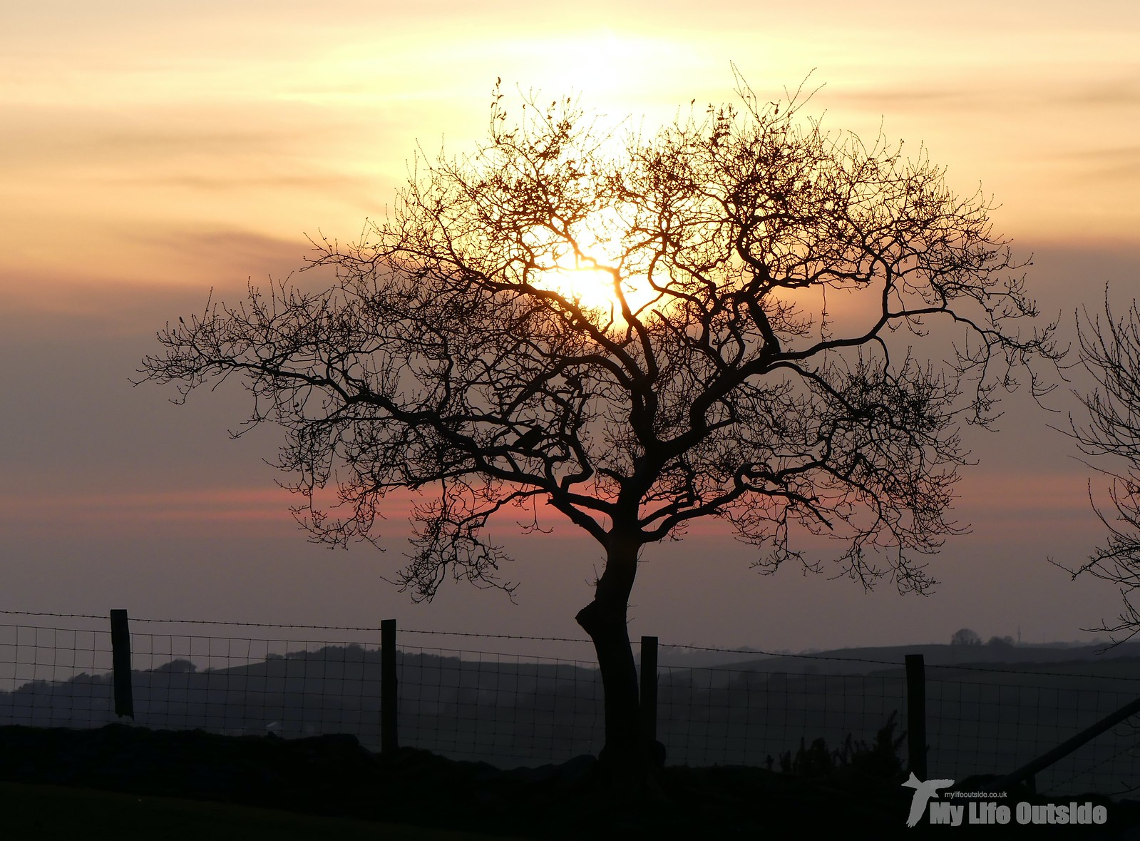 P1240144 - Sunset
