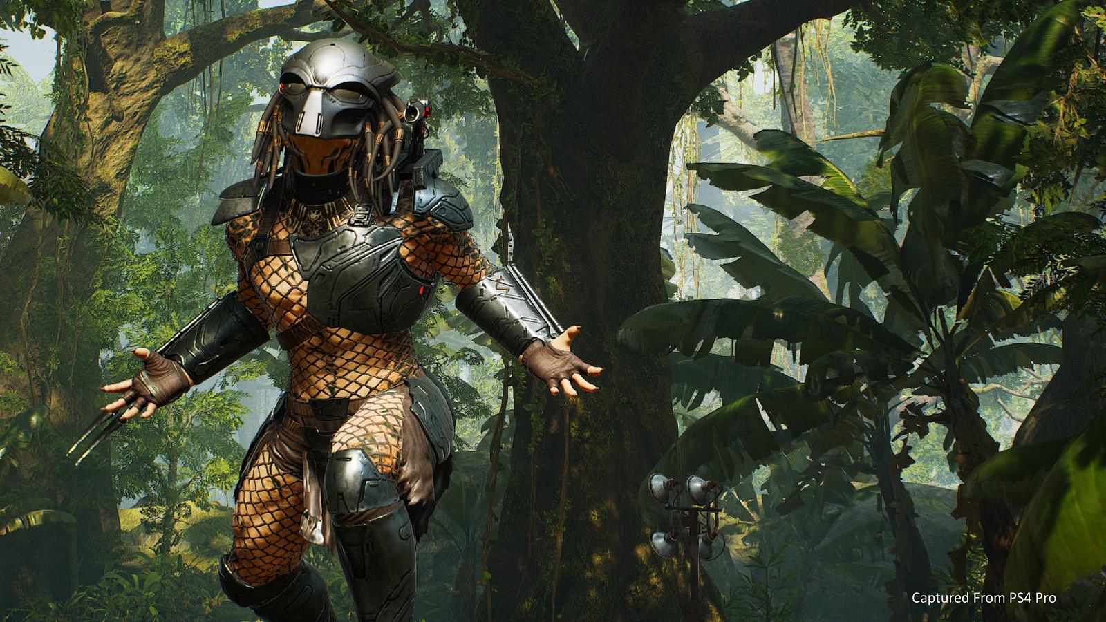 49698245431 13cf8ce1b4 h - Mit diesen Gameplay-Tipps seid ihr gewappnet für das Testwochenende von Predator: Hunting Grounds