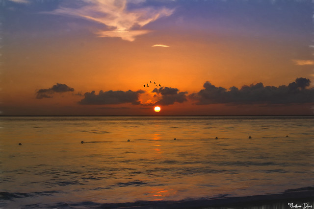 If the ocean