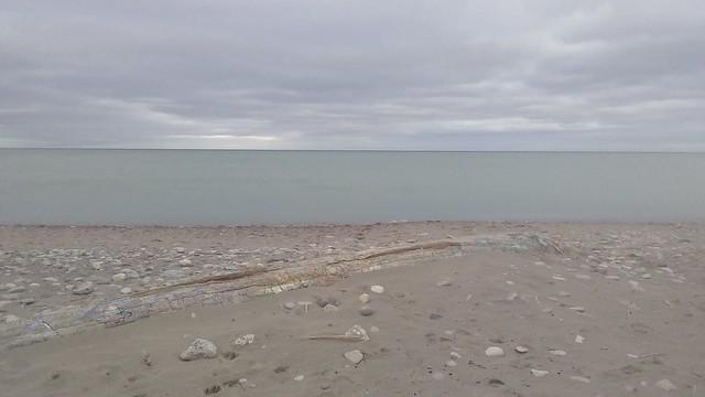 Blue, green, brown #toronto #woodbinebeach #beach #horizon #blue #green #brown #latergram