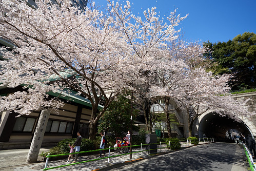 愛宕神社のトンネル