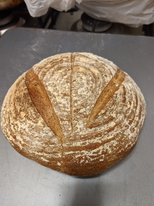 Trad yeasted rye loaf