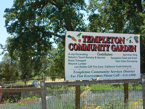 Community Garden in Templeton, CA