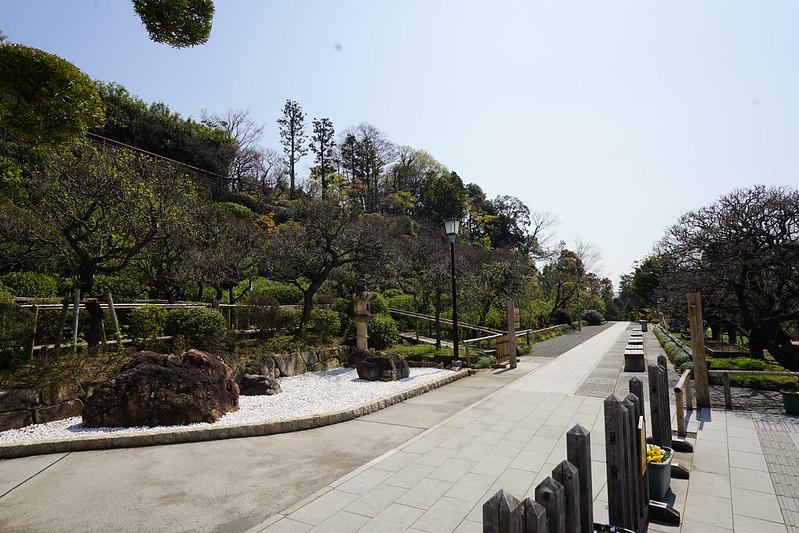 109東京いい道しぶい道池上道池上梅園