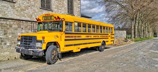 Bus - 8224
