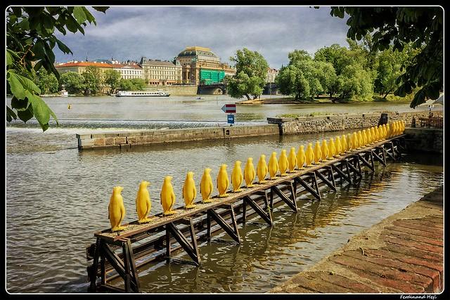 Praha_Prague_Vltava_Czechia