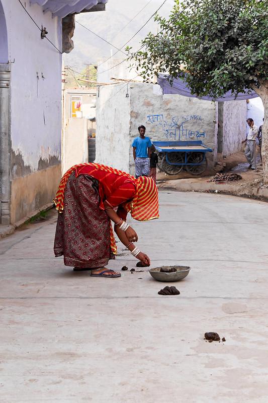 Départ pour l'école à Patan (Rajasthan) 49699966618_9e41eecf72_c