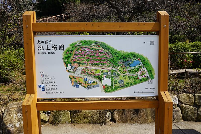 120東京いい道しぶい道池上道池上梅園