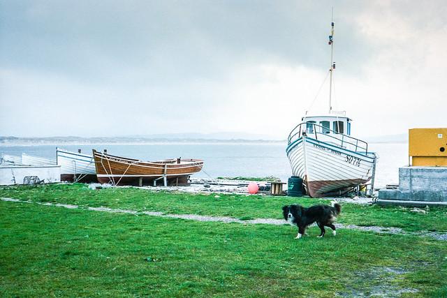 Inis Bó Finne, Co. Dhún na nGall, 1986.