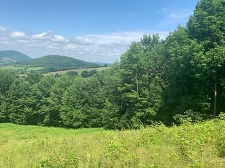 Summer in the Catskills