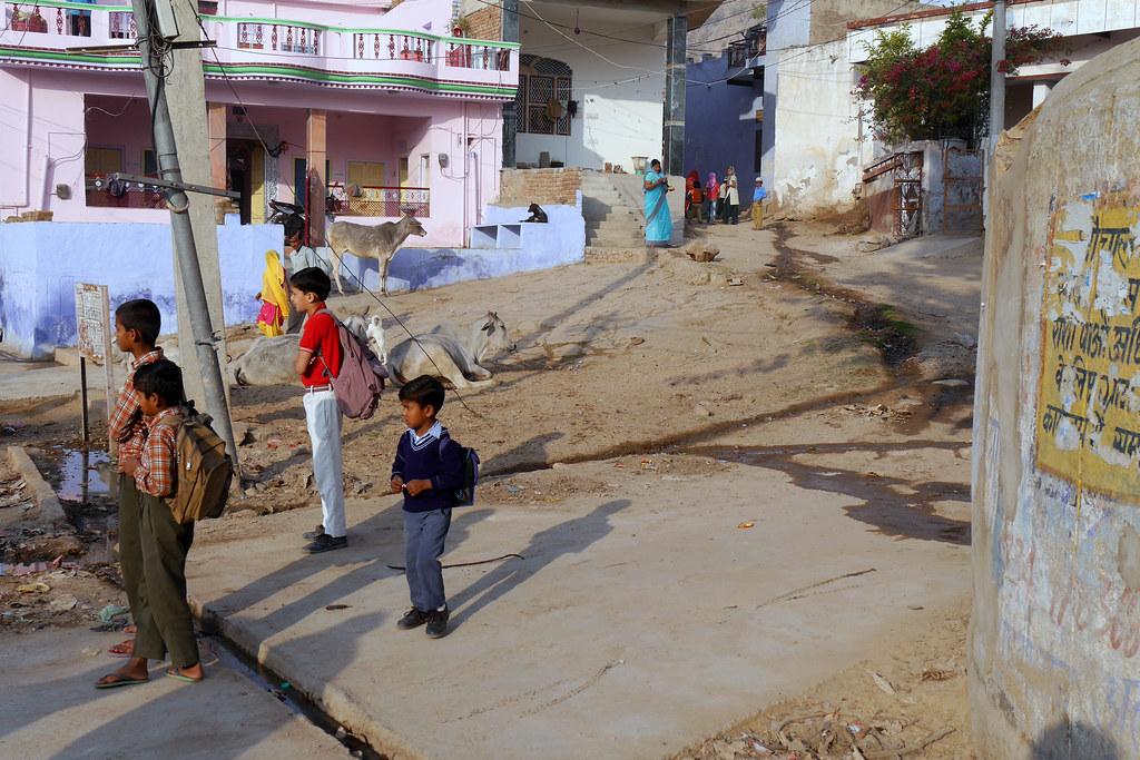 Départ pour l'école à Patan (Rajasthan) 49700805427_8e7eb30dc7_b