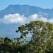 015A4201 Chiriqui Province, Panama