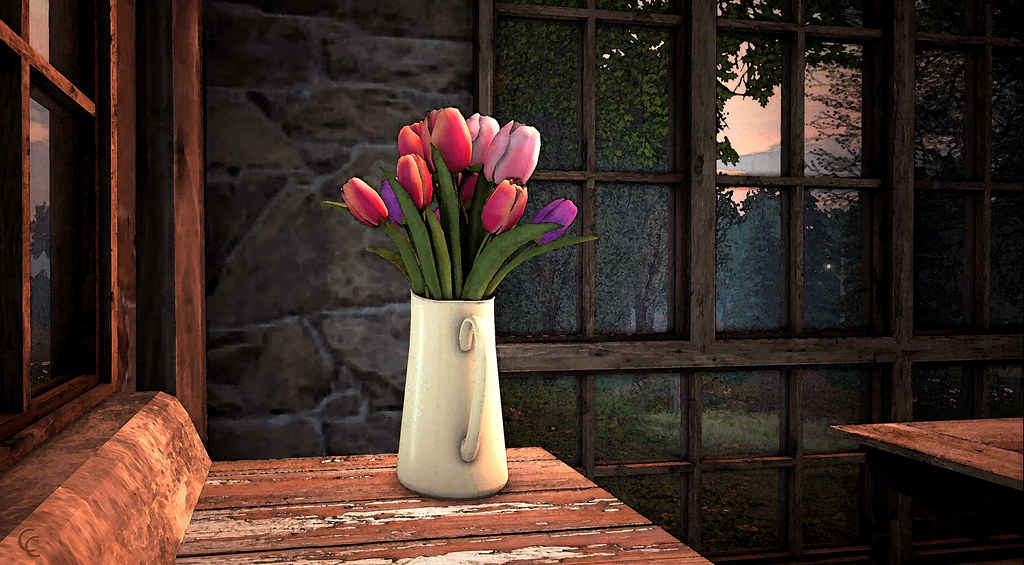 2020-03-26 Tulips