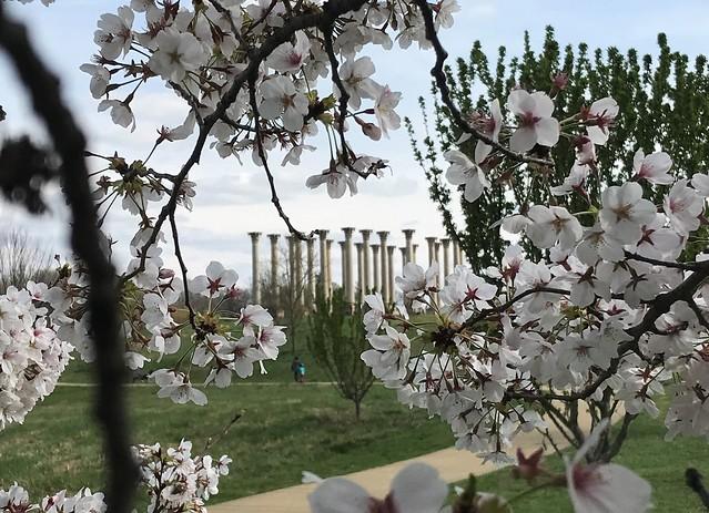 Capitol Columns @ National Arboretum