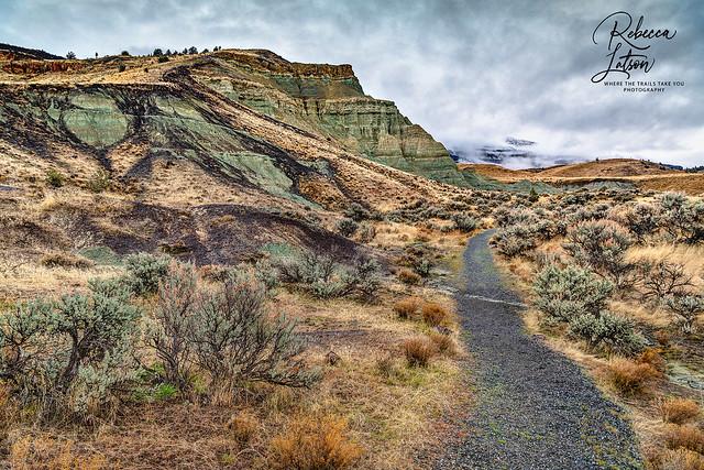 It's Take A Trail Thursday!