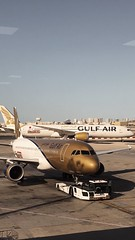 GULF CARRIER IN VARIOUS LIVERYS