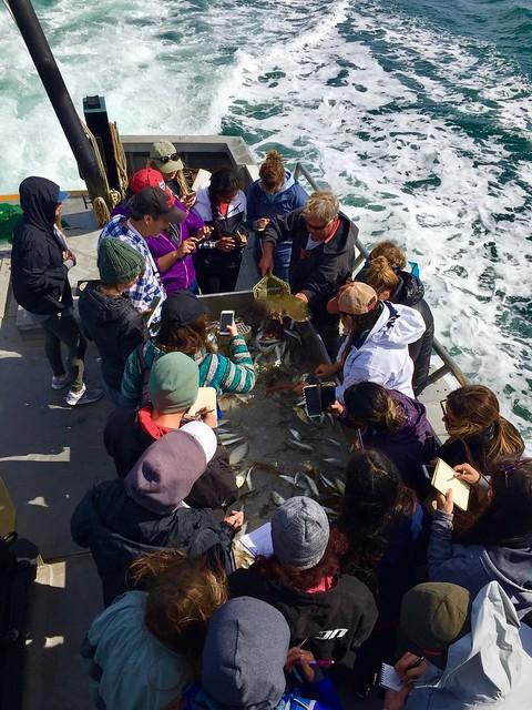 Ocean Sciences Spring 2018