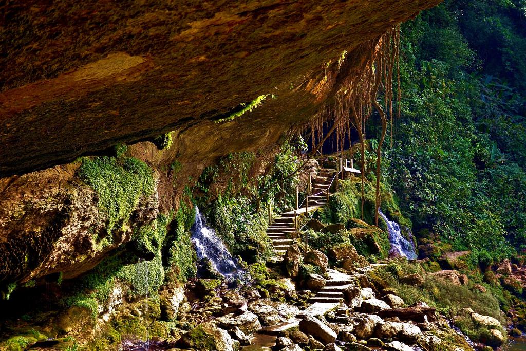 MEXICO, Chiapas , Wasserfall von Misol Ha, nahe Palenque, , 19623/12517