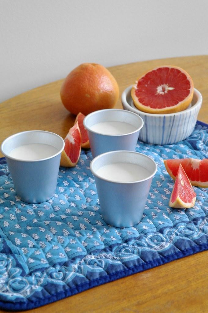 rosemary honey & grapefruit panna cotta