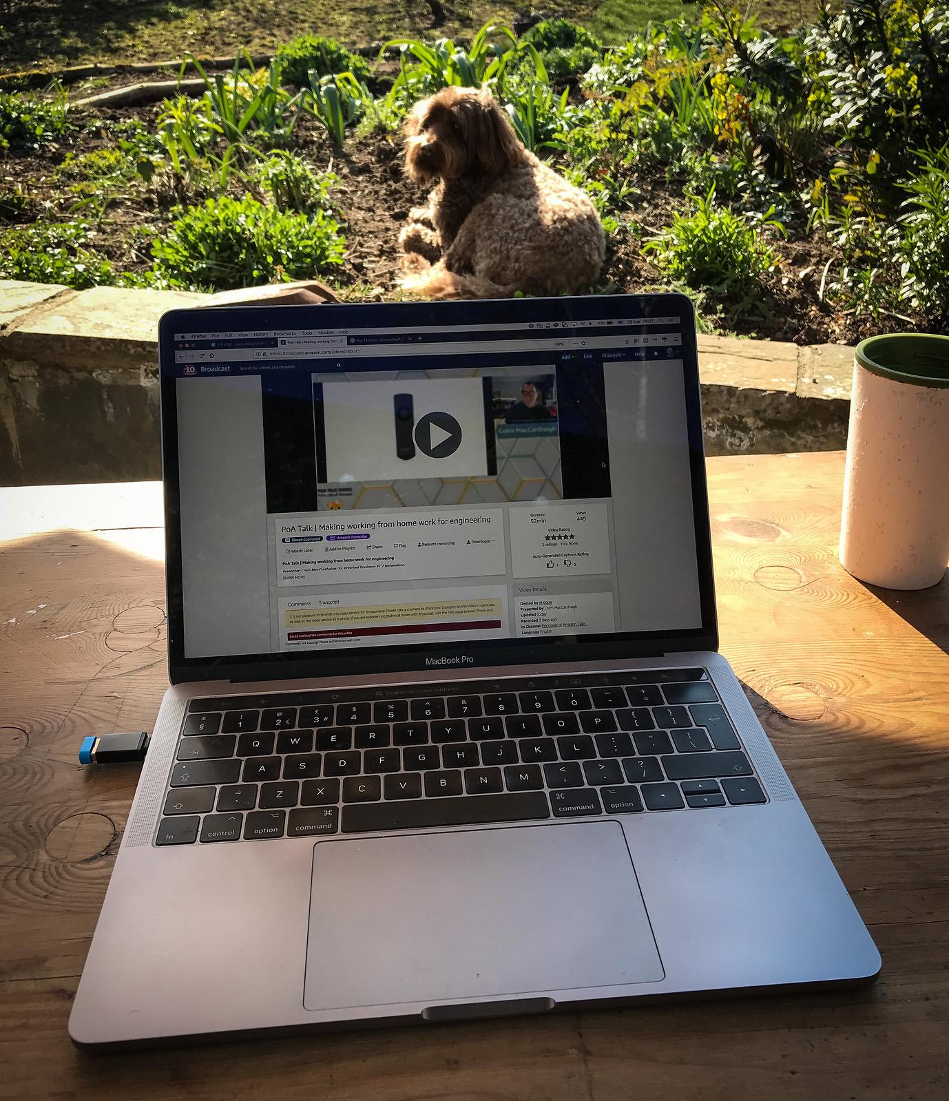 Working from garden