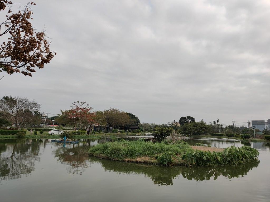 大林濕地 (8)