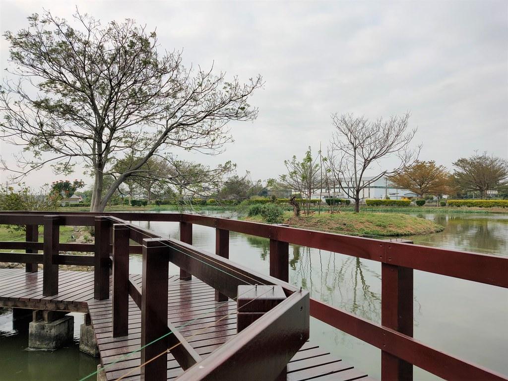 大林濕地 (6)