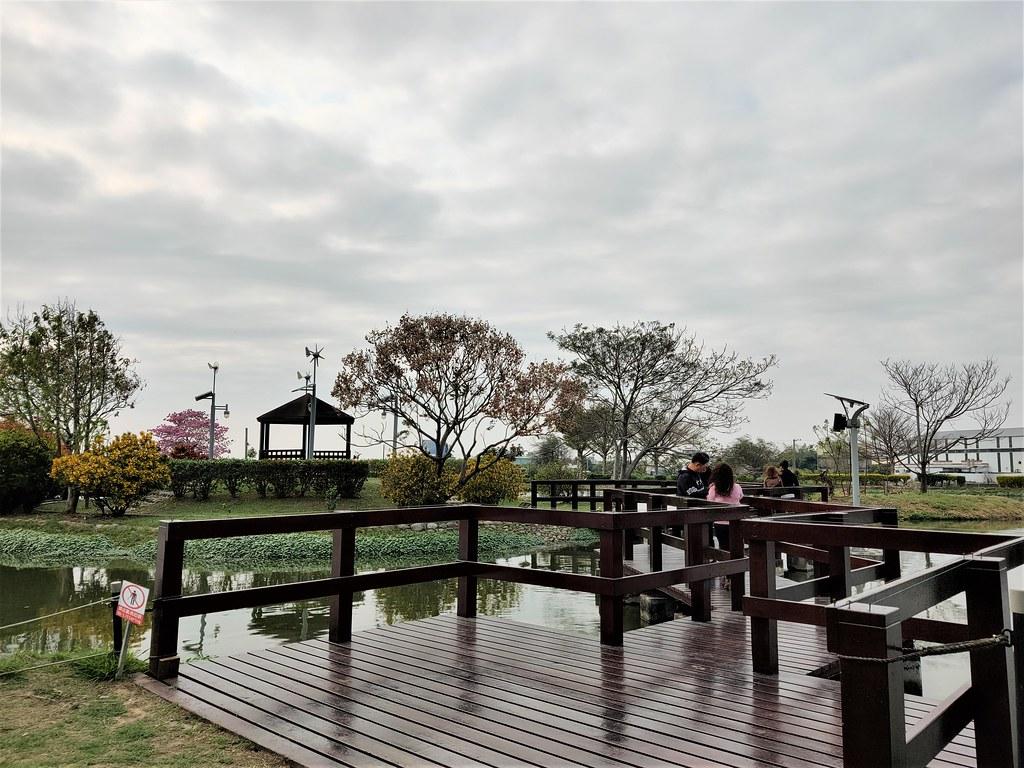 大林濕地 (5)