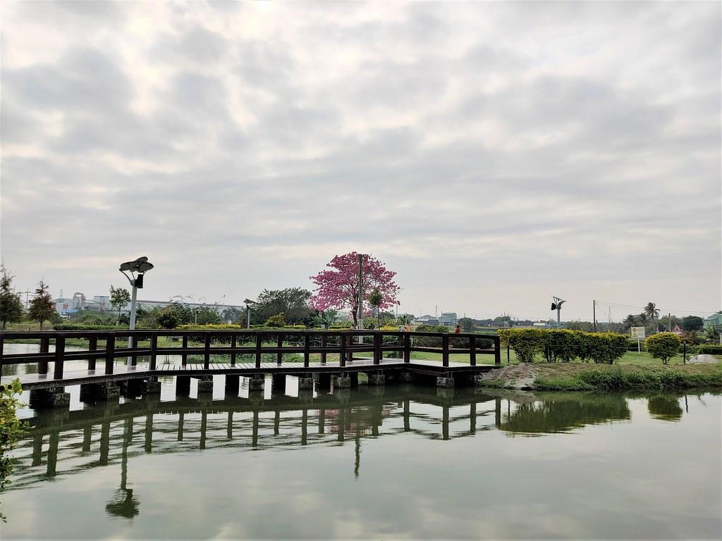 大林濕地 (7)