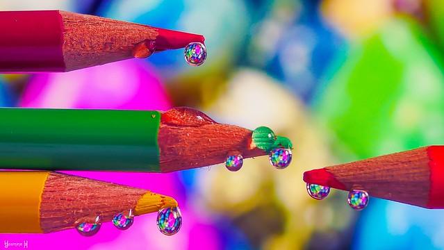 Colours - 8228