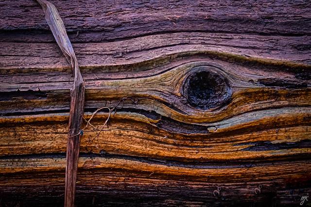 Lines on wood
